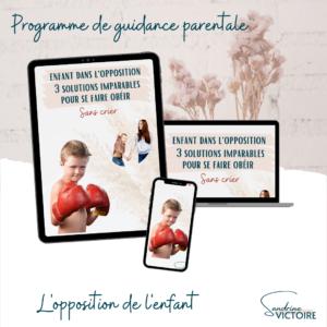 Programme de guidance parentale enfant dans l'opposition les clés pour se faire obéir sans crier